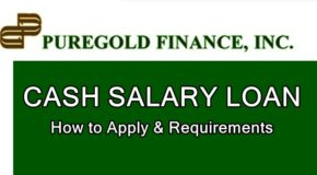 Puregold Cash Salary Loan – How To Apply For this Loan Offer