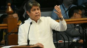 Pangilinan Wants EO for Lower Tariff for Pork Imports Lifted
